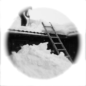 Norwegisch lernen im Schnee - Erfahrungsbericht einer Sprachreise